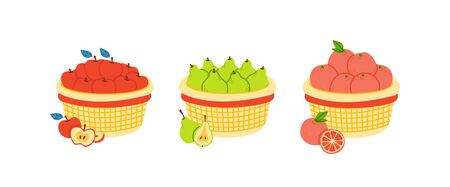 Baskets with fruits flat vector illustration set. Gathering apple, pear and orange harvest. Farming and gardening. Fresh ripe fruits in containers. Storage of products isolated clipart collection 일러스트