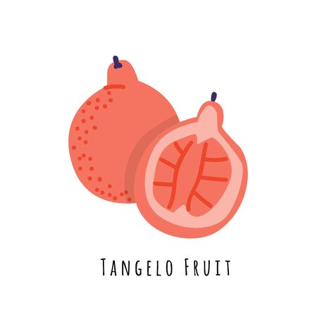 Tangelo fruit flat vector illustration. Cartoon slices of fresh exotic  fruit. Isolated icon with shadow. Citrus hybrid creative clipart with typography for healthy cooking menu, design element