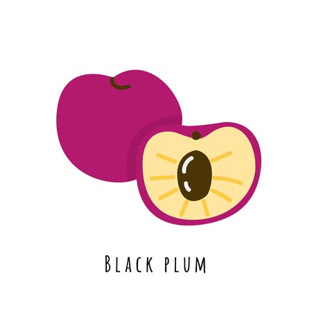 Black plum flat vector illustration. Cartoon sweet fresh fruit. Creative clipart with typography. Isolated icon for healthy cooking menu, design element