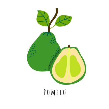 Pomelo fruit flat vector illustration. Cartoon slices of fresh tropical fruit. Isolated icon with shadow. Citrus creative clipart with typography for healthy cooking menu, design element Иллюстрация