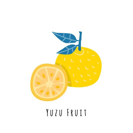 Yuzu fruit flat vector illustration. Cartoon slices of exotic, tropical fresh fruit. Clipart with typography. Isolated icon for healthy cooking menu, design element 일러스트