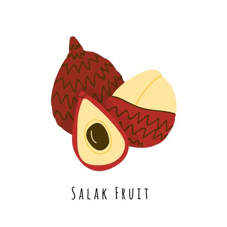 Salak fruit flat vector illustration. Cartoon slices of exotic, tropical fresh fruit. Clipart with typography. Isolated icon for healthy cooking menu,  design element
