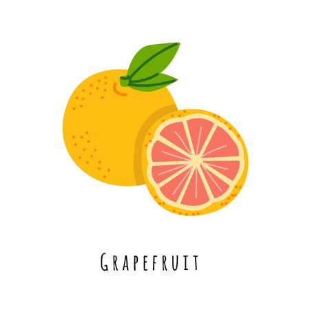 Grapefruit flat vector illustration. Cartoon slices of fresh fruit. Isolated icon with shadow. Orange citrus creative clipart with typography for healthy cooking menu, design element Stok Fotoğraf - 129765599