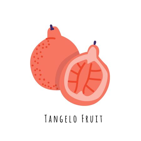 Tangelo fruit flat vector illustration. Cartoon slices of exotic, tropical fresh fruit. Clipart with typography. Isolated icon for healthy cooking menu, design element 일러스트