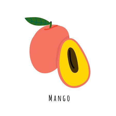 Mango fruit flat vector illustration. Cartoon slices of tropical fresh fruit. Mangifera creative clipart with typography. Isolated icon for healthy cooking menu, design element