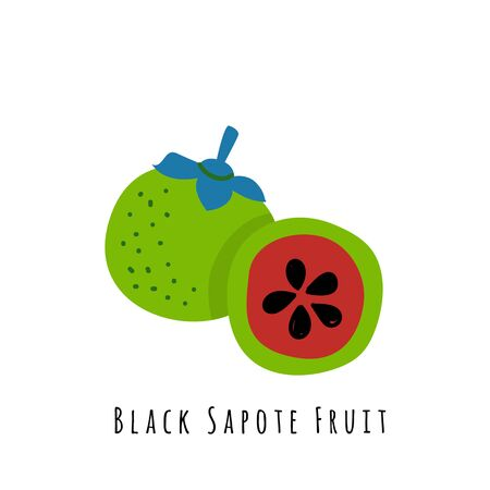 Black sapote fruit flat vector illustration. Cartoon slices of fresh tropical fruit. Isolated icon with shadow. Citrus creative clipart with typography for healthy cooking menu, design element
