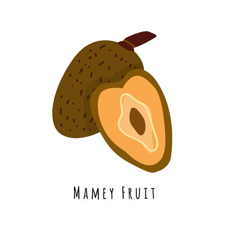 Mamey fruit flat vector illustration. Cartoon slices of exotic, tropical fresh fruit. Clipart with typography. Isolated icon for healthy cooking menu, design element