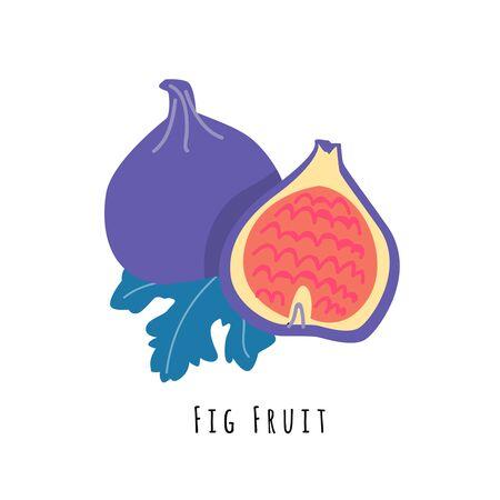 Ilustracja wektorowa płaskie owoce figowe. Kreskówka plastry egzotycznych, tropikalnych świeżych owoców. Clipart z typografią. Ikona na białym tle dla zdrowego menu gotowania, element projektu