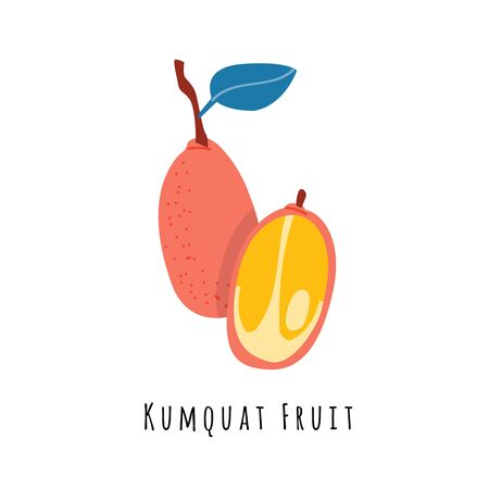 Kumquat fruit flat vector illustration. Cartoon slices of exotic, tropical fresh fruit. Clipart with typography. Isolated icon for healthy cooking menu, design element