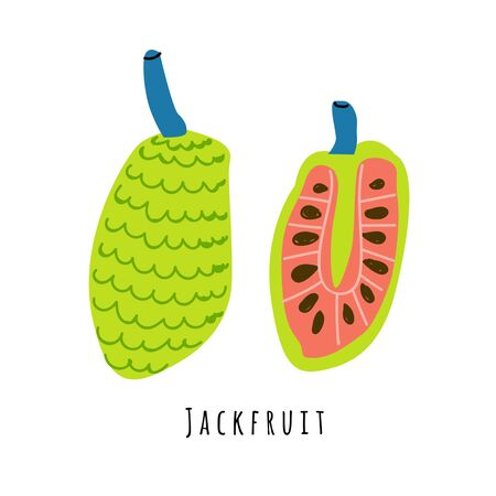 Jackfruit fruit flat vector illustration. Cartoon slices of exotic, tropical fresh fruit. Clipart with typography. Isolated icon for healthy cooking menu, design element Çizim