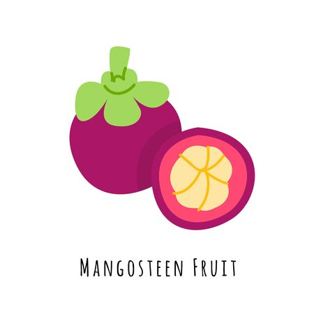 Mangosteen fruit flat vector illustration. Cartoon slices of exotic, tropical fresh fruit. Clipart with typography. Isolated icon for healthy cooking menu, design element