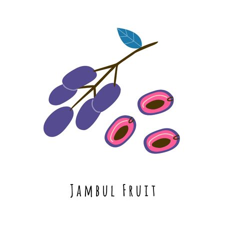 Jambul fruit flat vector illustration. Cartoon slices of exotic, tropical fresh fruit. Clipart with typography. Isolated icon for healthy cooking menu, design element 일러스트