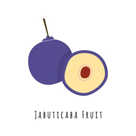 Jabuticaba fruit flat vector illustration. Cartoon slices of exotic, tropical fresh fruit. Clipart with typography. Isolated icon for healthy cooking menu, design element