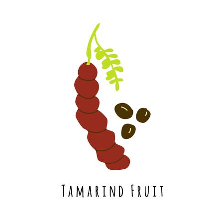 Tamarind fruit flat vector illustration. Cartoon slices of exotic, tropical fresh fruit. Clipart with typography. Isolated icon for healthy cooking menu, design element 일러스트