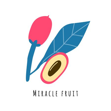 Miracle fruit flat vector illustration. Cartoon slices of exotic, tropical fresh fruit. Clipart with typography. Isolated icon for healthy cooking menu, design element