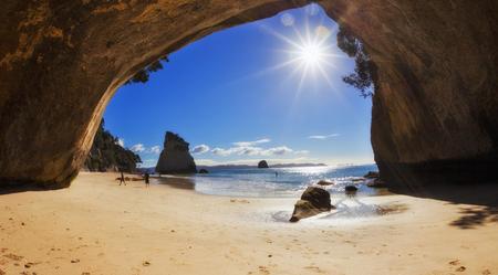 cove: Coromandel Cove