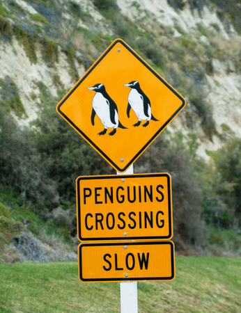 orthographic symbol: Penguins Crossing.