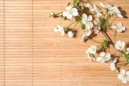 blossom Cherry on bamboo background Stock Photo - 5315969