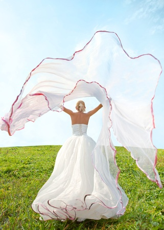 bride with long veil  Stock Photo