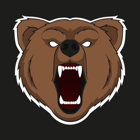 Vector illustration of raring head of bear. Isolated.