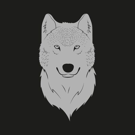 Vector illustration of looking wolf head. Isolated.