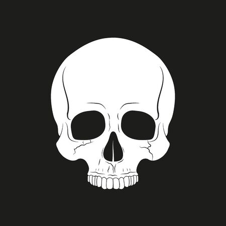 Black and white human skull without a lower jaw. Vector. Vectores