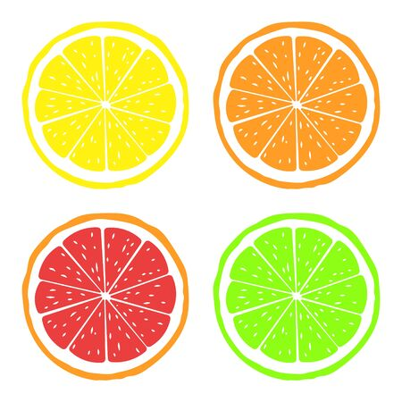 Vector illustration of slices of citrus fruits.