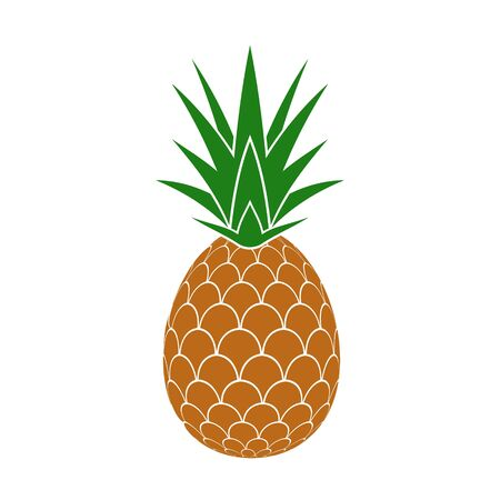 Pineapple isolated on white background. Vector illustration.