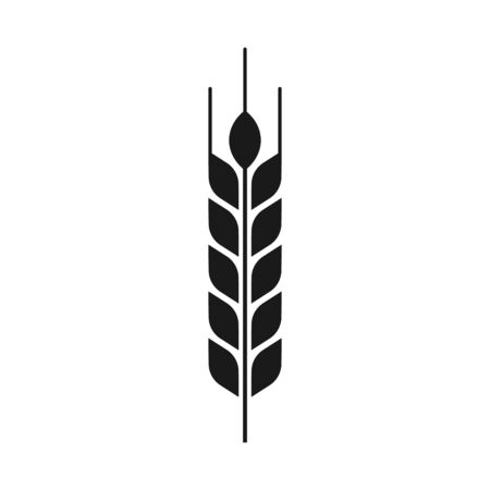 Vector illstration of wheat ears icon. Flat design. Isolated.