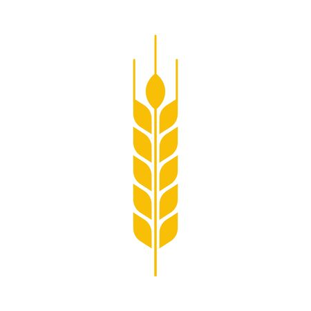 Vector illstration of wheat ear icon on white background. Isolated.
