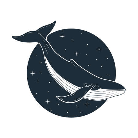 Blue whale swimming in space. Vector illustration.