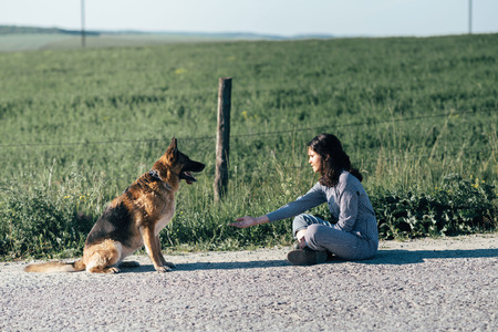 Cute girl playing with her dog against the background of the field.