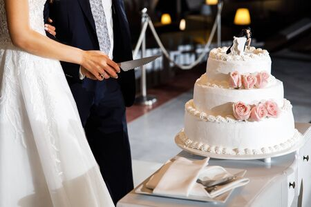 The bride and groom are getting ready to cut the wedding cake.