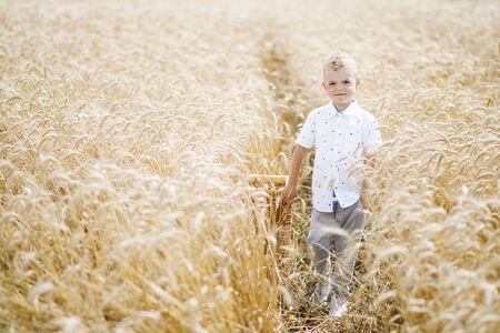 Happy child in summer wheat field. 写真素材