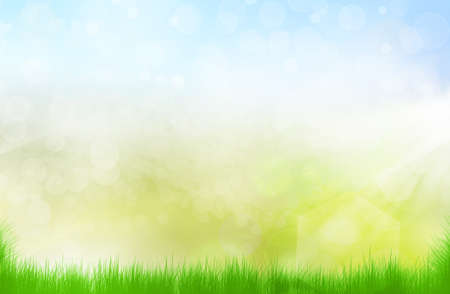 bright summer background bokeh Stock Photo - 16195543