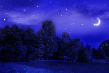 beautiful night landscape