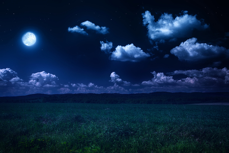 beautiful summer landscape, moonlit night on nature