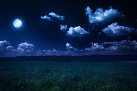 hermoso paisaje de verano, noche de luna en la naturaleza
