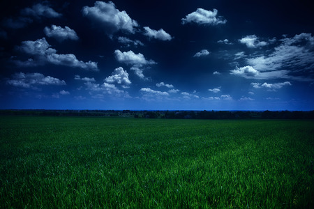 starlit: dark cloudy sky and green field, beautiful summer landscape