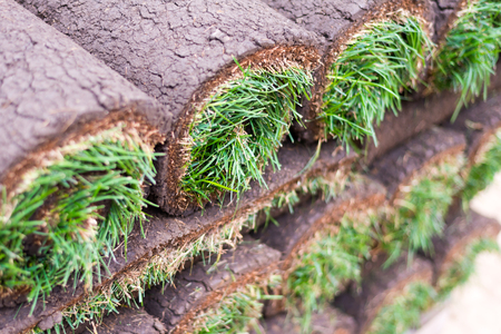 New Rolled Sod Grass Stacked Stock Photo