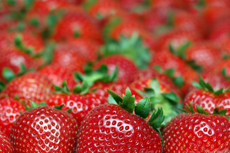 Bunch of strawberries picture with selective focus and copy space for text.