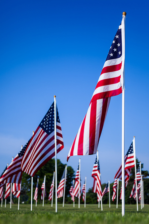 Picture of American flags of the United States in a field memorial. The red, white, and blue American flag is also called Old Glory, Stars and Stripes, and the Star Spangled Banner. Stock Photo
