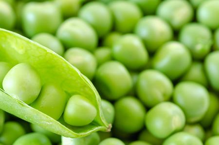 Fresh peas texture background. Green peas background pattern. Stock Photo