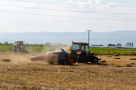 Ciągnik pracuje na polu przy czyszczeniu słomy. Zdjęcie Seryjne