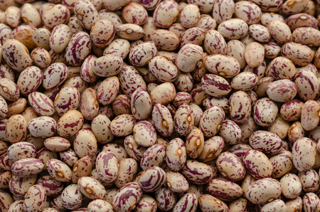 Kidney beans texture background or pattern. Raw legume food. 스톡 콘텐츠