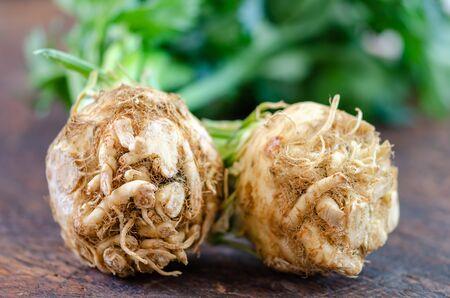 Frische rohe Bio-Selleriewurzel und Blätter hautnah Standard-Bild
