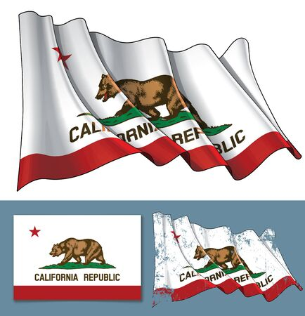 Vector illustration of a Waving Flag of the State of California. A textured version and the Flat Flag design are included. All elements neatly on well-defined layers ang groups.