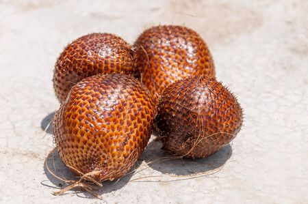 salak: Salak fruit or snake fruits on hard background Stock Photo