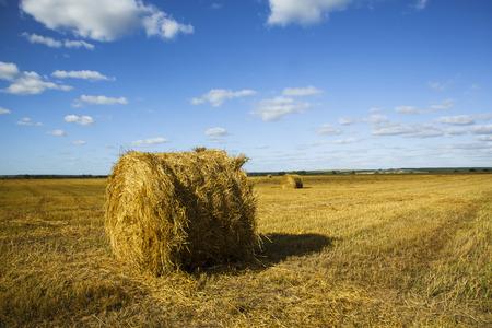 haymaking: Haystack naskoshennom field. Stock Photo