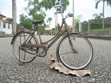 mini bike: Mini Bicycle for the Small Creature